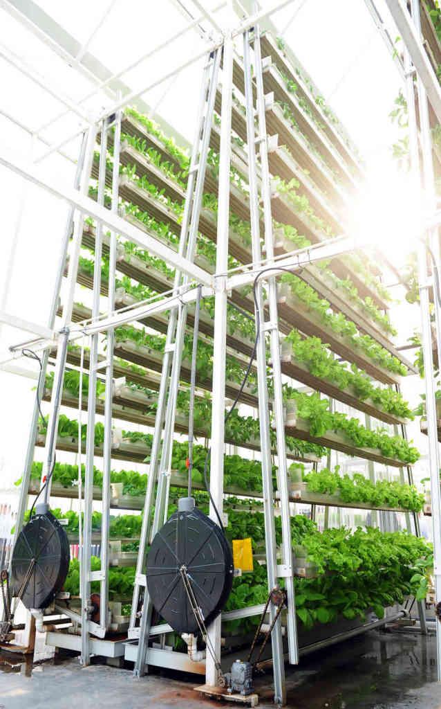 vertical farming_singapur